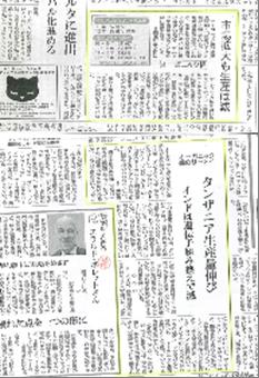 2013.06.19 1346 リーメイ社30周年CG4BB.png